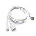 USB oplaadkabel voor Apple Pencil 1 en iPhone/iPad